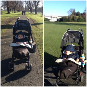 A walk in the Phoenix Park